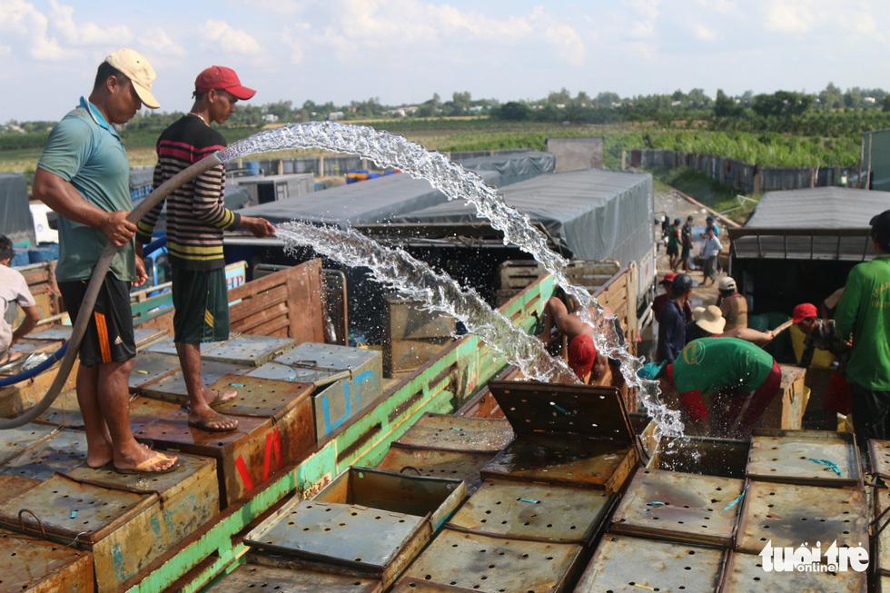 Con đường đưa nông thủy sản sang Thái Lan - Ảnh 6.