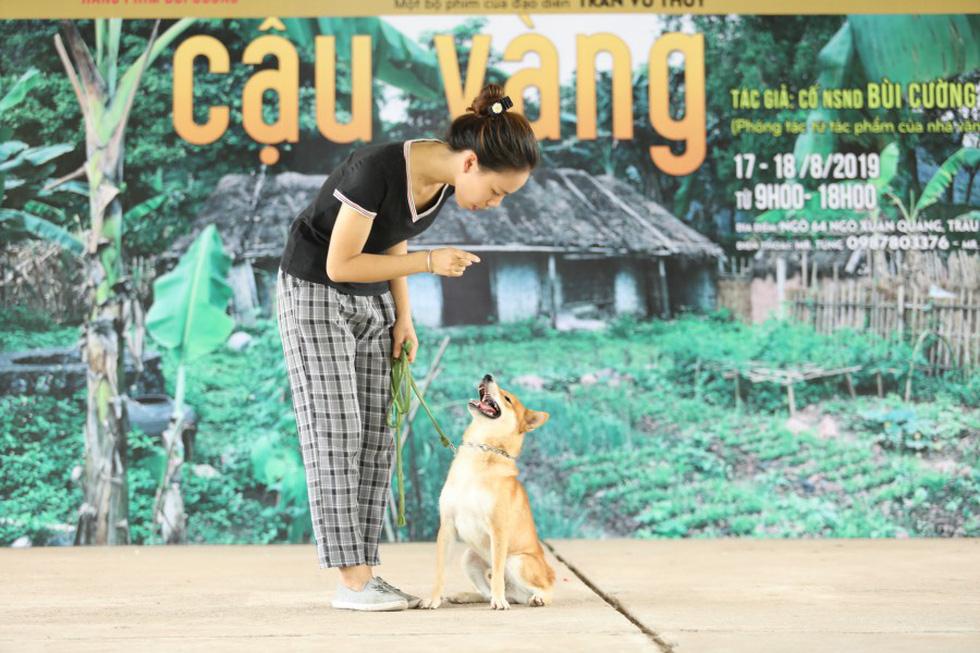 Cậu Vàng của Nam Cao: Phim Việt đầu tiên vai chính là một chú chó - Ảnh 9.