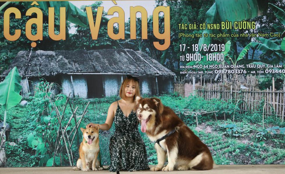 Cậu Vàng của Nam Cao: Phim Việt đầu tiên vai chính là một chú chó - Ảnh 4.