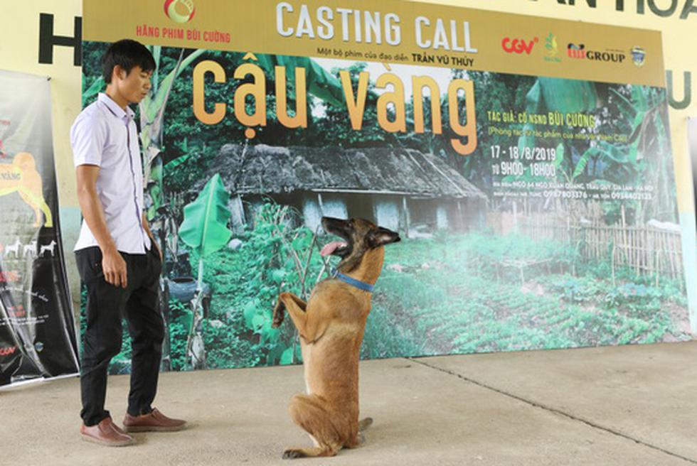 Cậu Vàng của Nam Cao: Phim Việt đầu tiên vai chính là một chú chó - Ảnh 3.