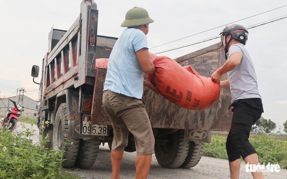 Nông dân Nghệ An hối hả thu hoạch lúa 'chạy' bão số 4 - Ảnh 2.