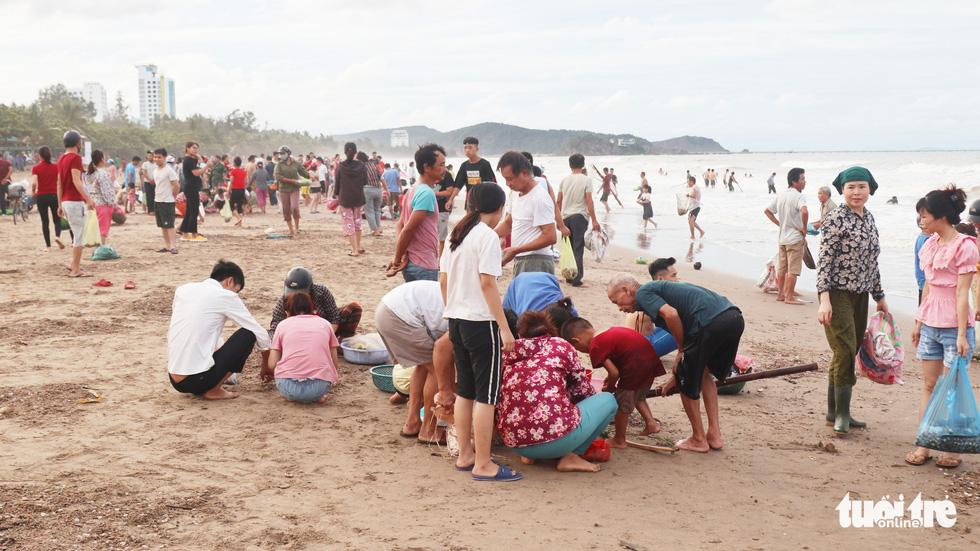 Cả trăm người dân, du khách tụ về bờ biển nhặt sò, ngao sau bão số 4 - Ảnh 2.