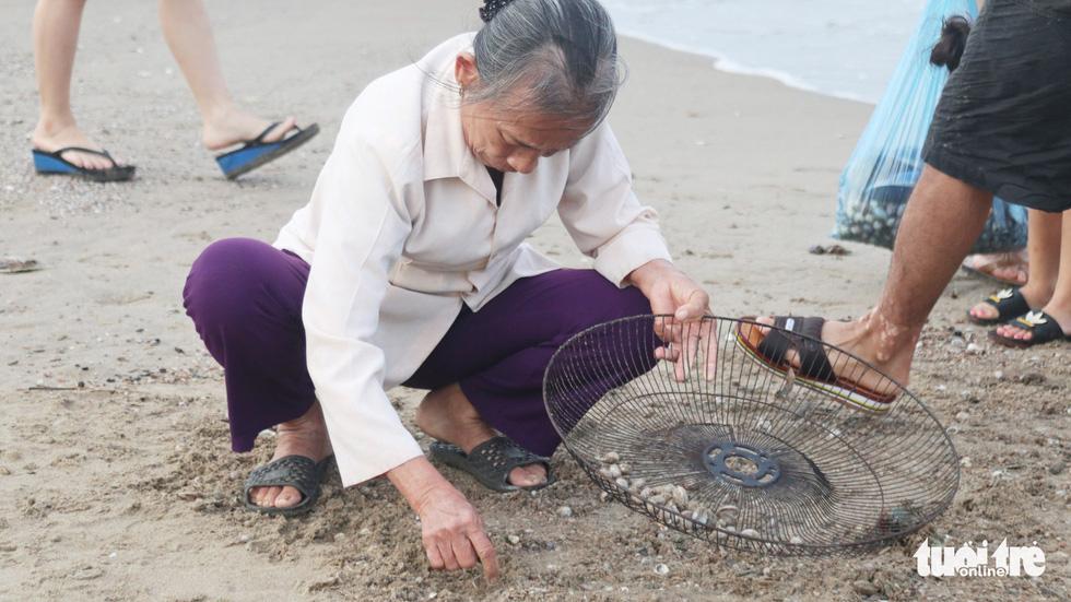 Cả trăm người dân, du khách tụ về bờ biển nhặt sò, ngao sau bão số 4 - Ảnh 10.