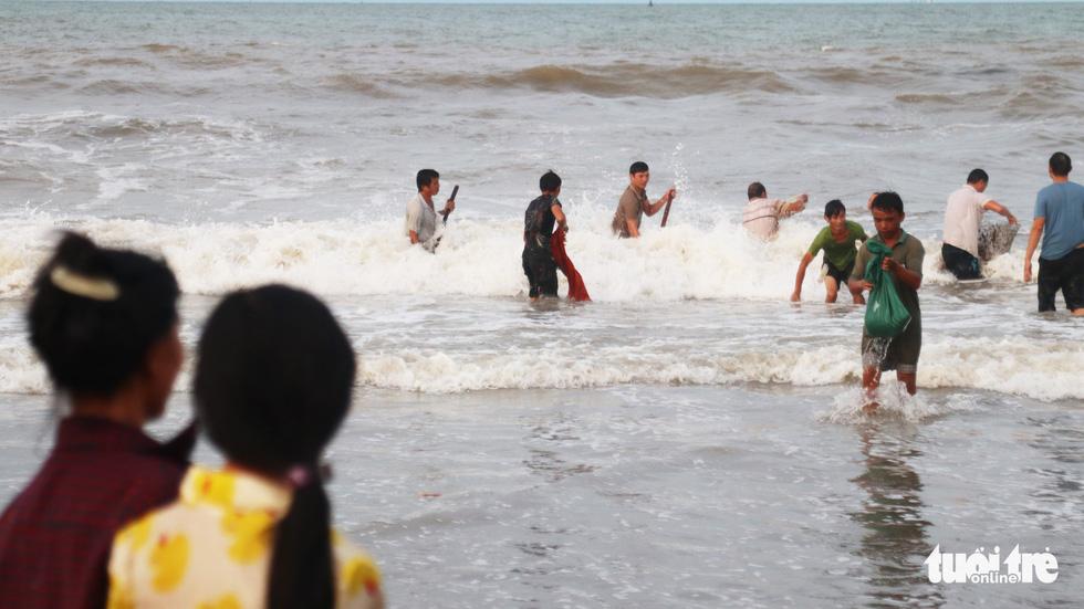 Cả trăm người dân, du khách tụ về bờ biển nhặt sò, ngao sau bão số 4 - Ảnh 5.