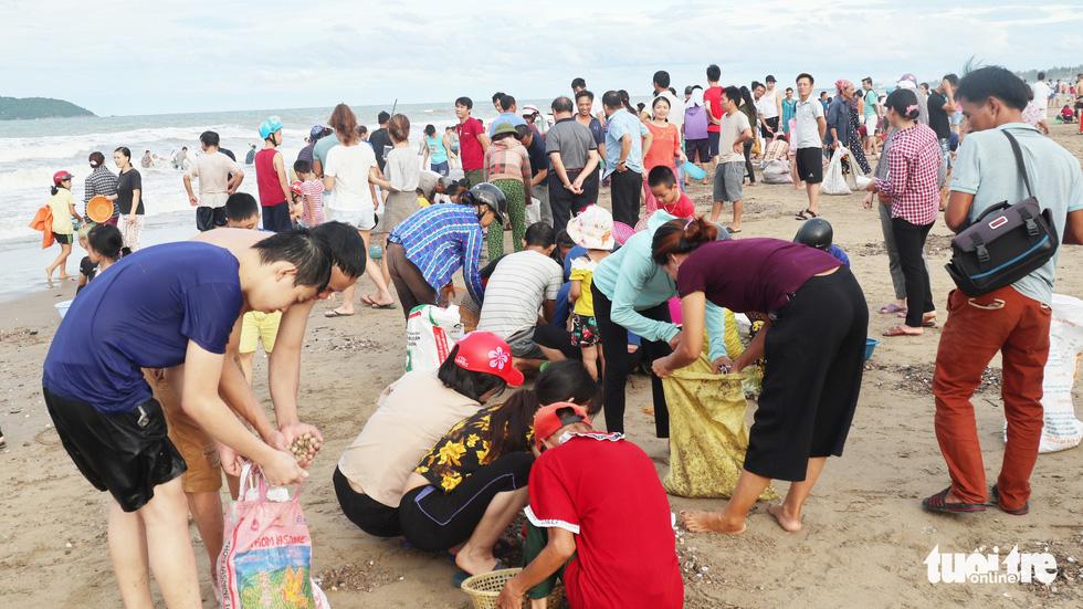 Cả trăm người dân, du khách tụ về bờ biển nhặt sò, ngao sau bão số 4 - Ảnh 1.
