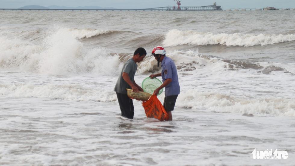 Cả trăm người dân, du khách tụ về bờ biển nhặt sò, ngao sau bão số 4 - Ảnh 9.