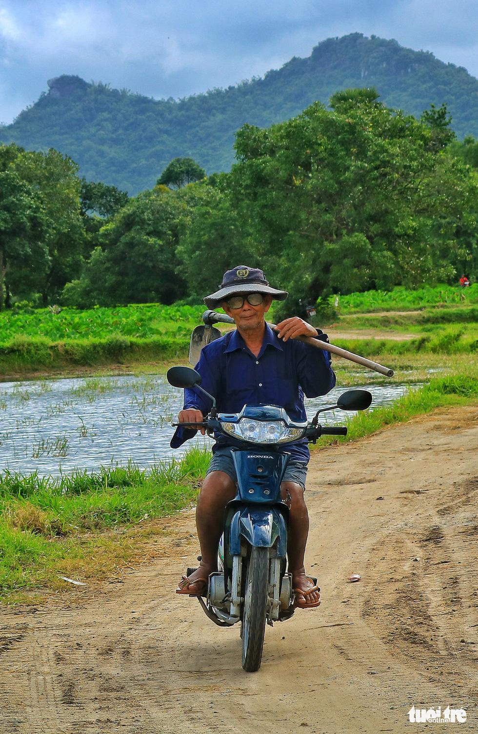 Bình dị mà rạng rỡ trên cánh đồng lúa Tà Pạ ở Tri Tôn - Ảnh 5.
