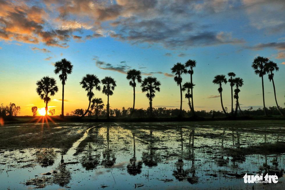 Bình dị mà rạng rỡ trên cánh đồng lúa Tà Pạ ở Tri Tôn - Ảnh 14.