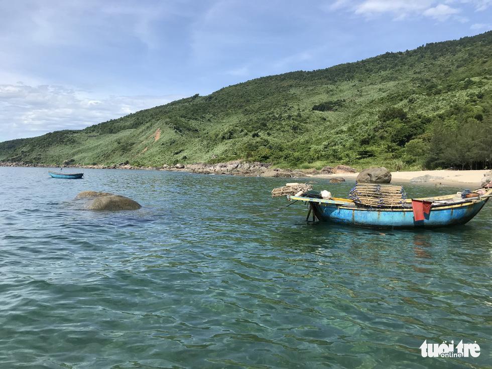 Sủng Cỏ thiên đường hoang sơ nơi cửa vịnh Đà Nẵng - Ảnh 7.