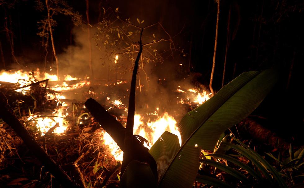 Thêm 2.000 đám cháy mới ở Amazon chỉ sau 2 ngày Brazil cấm đốt rừng - Ảnh 3.