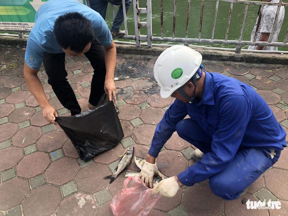 Sau mưa lớn, người dân đổ ra sông Tô Lịch câu cá - Ảnh 3.
