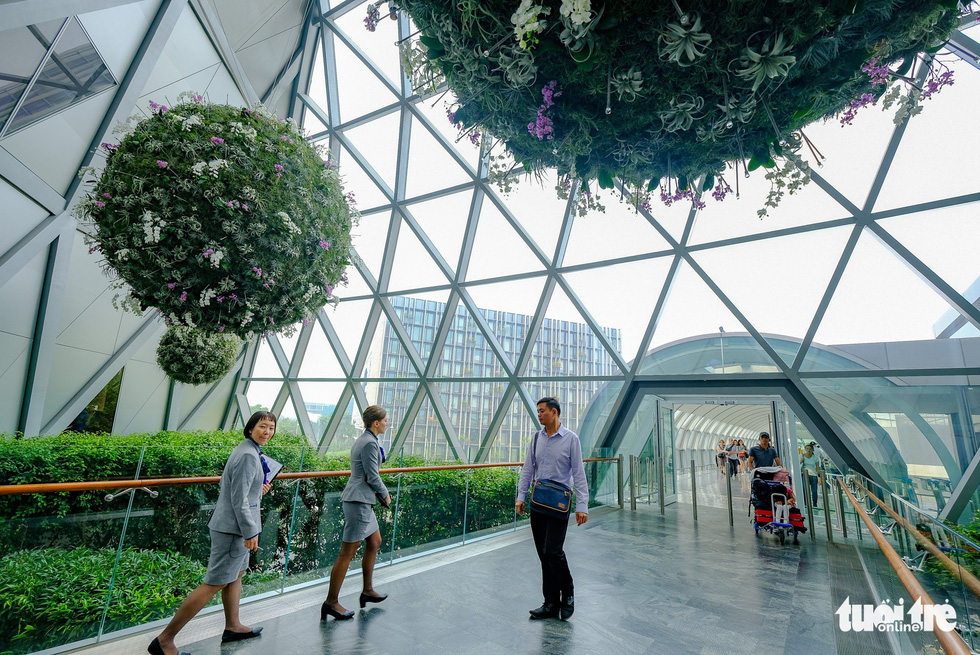 Lạc vào khu rừng bên trong sân bay Changi Singapore - Ảnh 7.