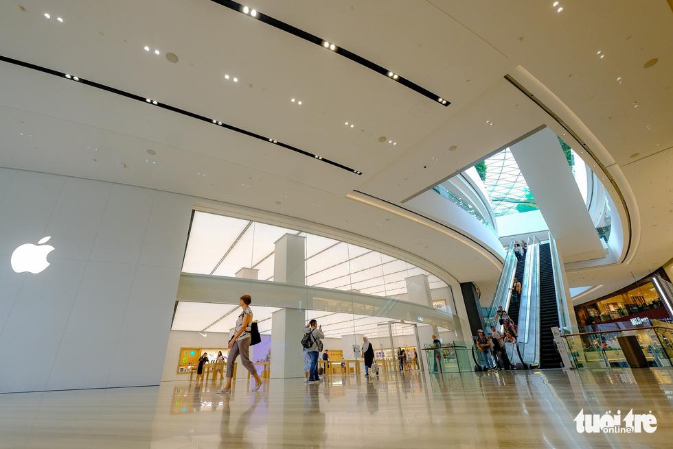Lạc vào khu rừng bên trong sân bay Changi Singapore - Ảnh 12.