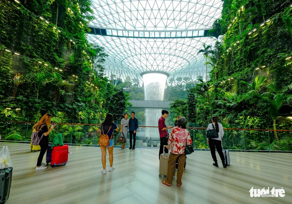 Lạc vào khu rừng bên trong sân bay Changi Singapore - Ảnh 5.