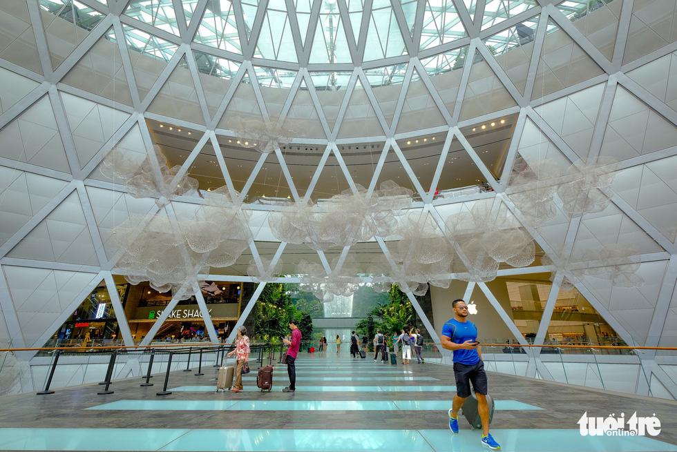 Lạc vào khu rừng bên trong sân bay Changi Singapore - Ảnh 10.