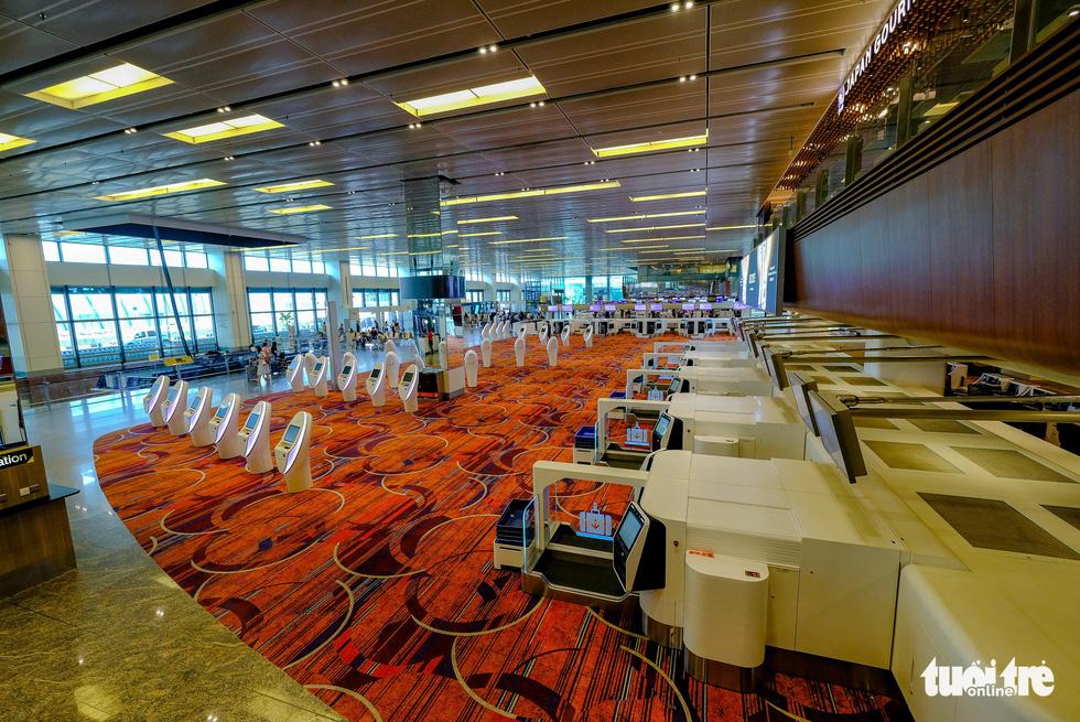 Lạc vào khu rừng bên trong sân bay Changi Singapore - Ảnh 13.