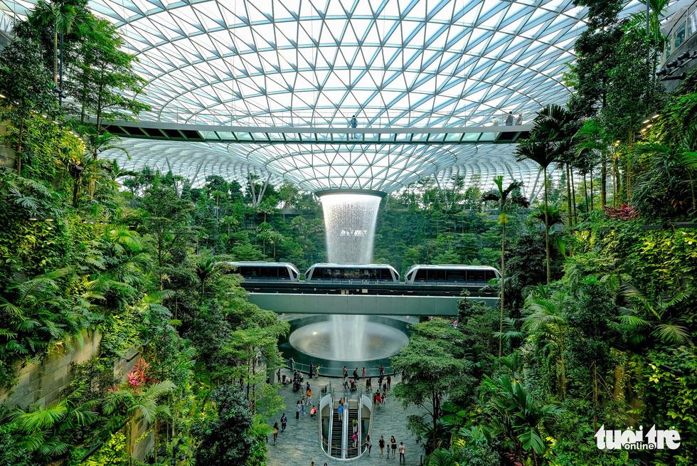 Lạc vào khu rừng bên trong sân bay Changi Singapore - Ảnh 1.
