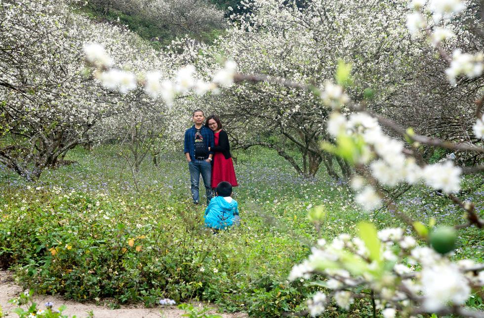 Lạc bước thiên đường trắng Mộc Châu mùa hoa mận nở - Ảnh 8.