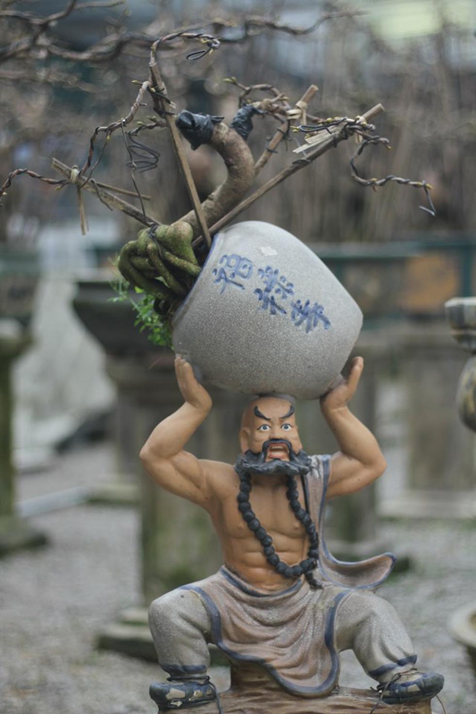 Chiêm ngưỡng đại lão mai Nét xưa Bình Định, Khủng long bạo chúa, Vũ nữ chân dài - Ảnh 10.