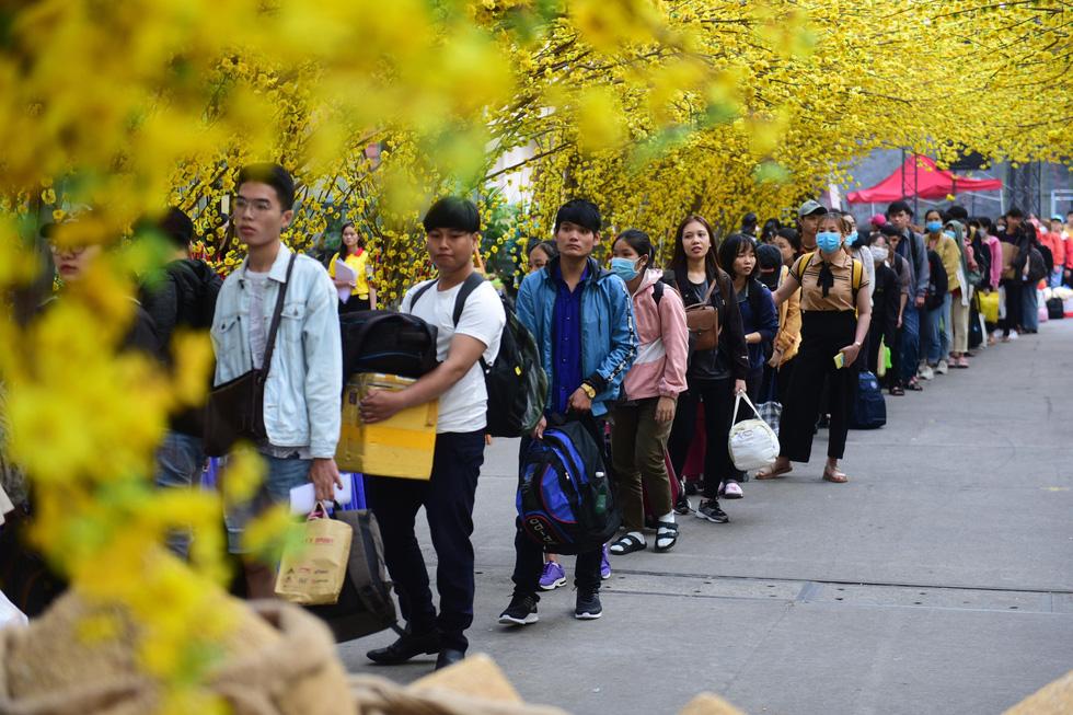 Bến xe sinh viên nhộn nhịp giữa rừng mai vàng - Ảnh 12.