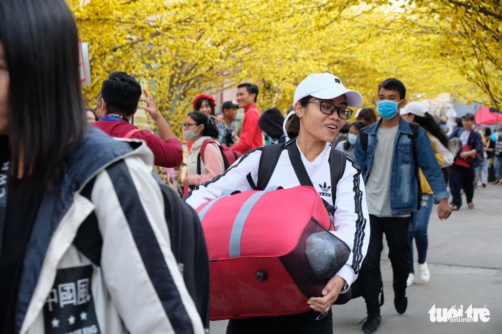 Bến xe sinh viên nhộn nhịp giữa rừng mai vàng - Ảnh 1.