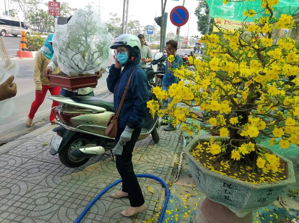 Mai tết Sài Gòn bay đi Hà Nội, Campuchia - Ảnh 1.