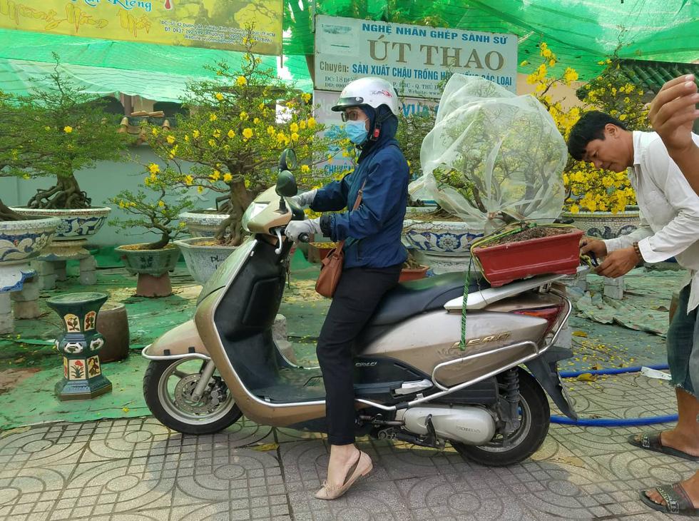 Mai tết Sài Gòn bay đi Hà Nội, Campuchia - Ảnh 3.
