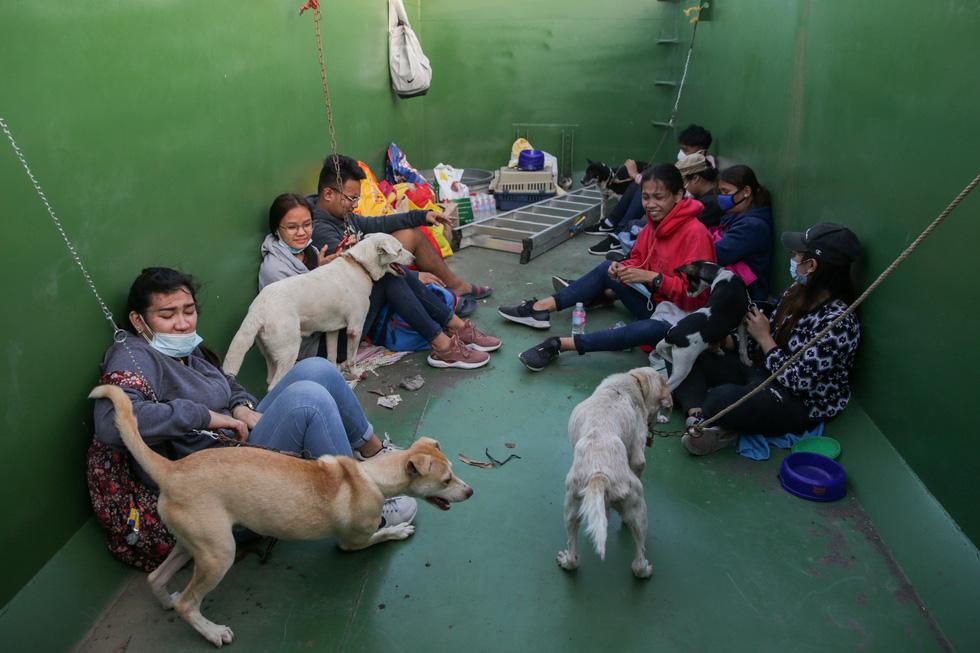 Thú cưng, gia súc, gia cầm được giải cứu và di tản vì tro núi lửa ở Philippines - Ảnh 4.