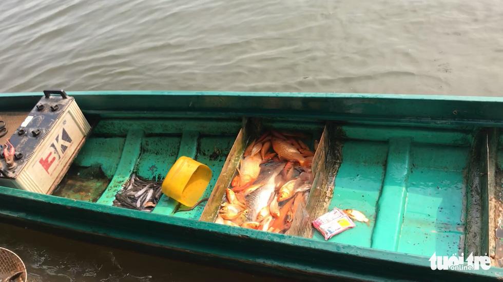 Cá chép đưa ông Táo vừa thả xuống sông đã bị chích điện bất tỉnh - Ảnh 5.