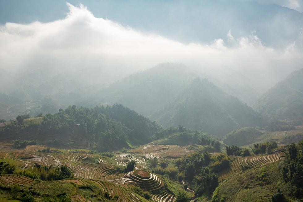 Chuyến thu hoạch thảo quả ở vườn quốc gia Hoàng Liên lên NatGeo - Ảnh 3.