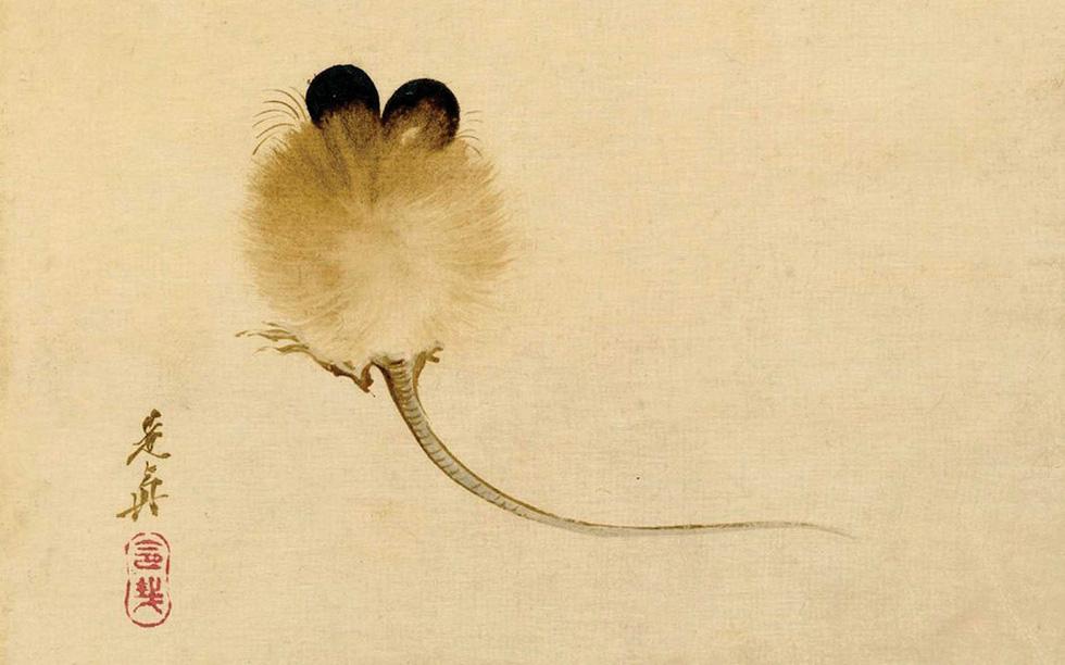 Chuột: Minh họa cho huyền thoại, lòng tin và cả ảo tưởng của chúng ta - Ảnh 1.