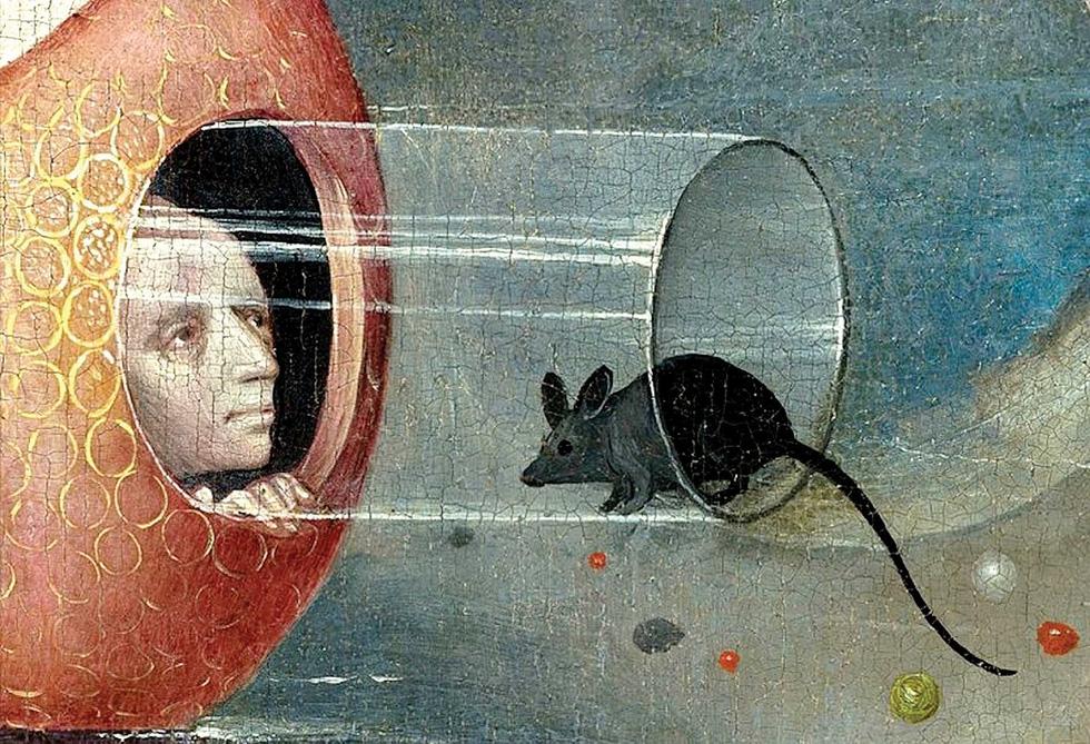 Chuột: Minh họa cho huyền thoại, lòng tin và cả ảo tưởng của chúng ta - Ảnh 2.
