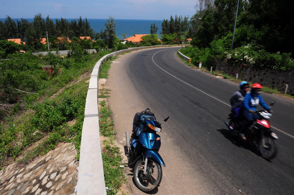 Cung đường biển Nam Trung Bộ rực sắc hoa tràm vàng - Ảnh 3.