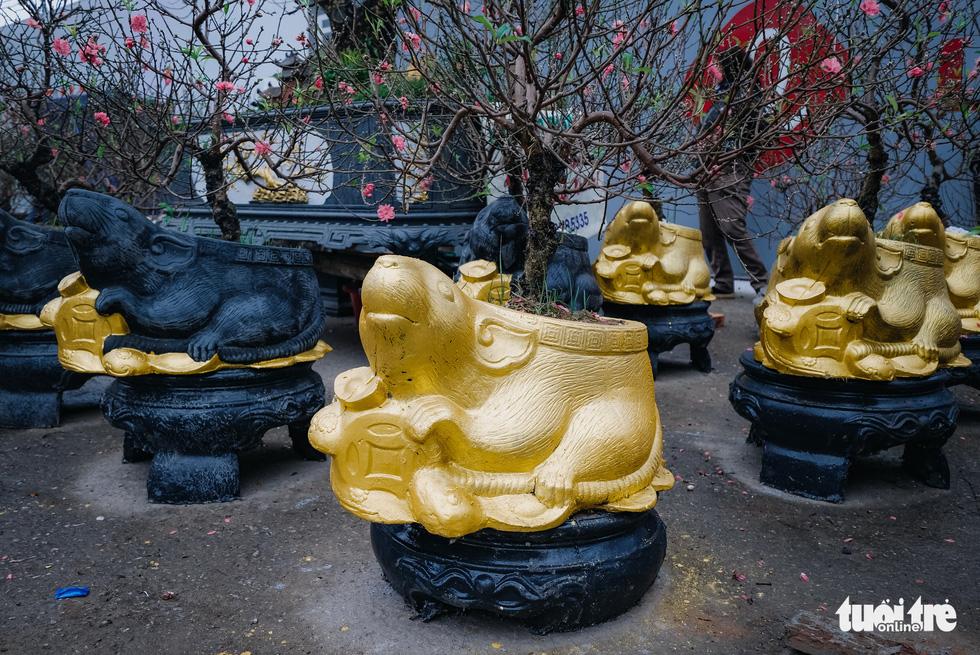 Chuột vàng 'cõng' đào Nhật Tân hút khách ngày cận tết - Ảnh 5.