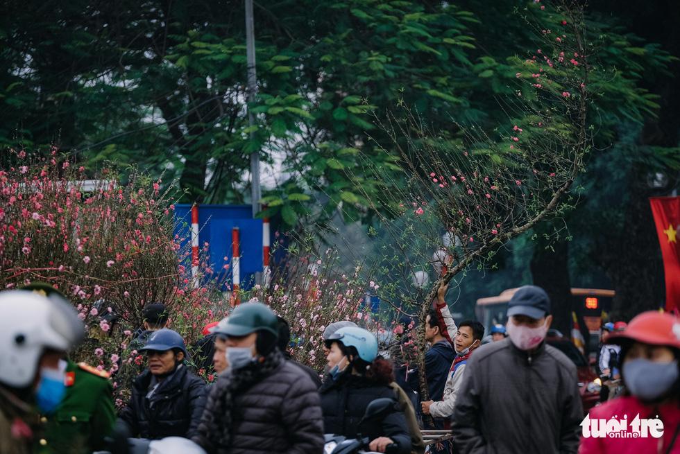 Chuột vàng 'cõng' đào Nhật Tân hút khách ngày cận tết - Ảnh 13.