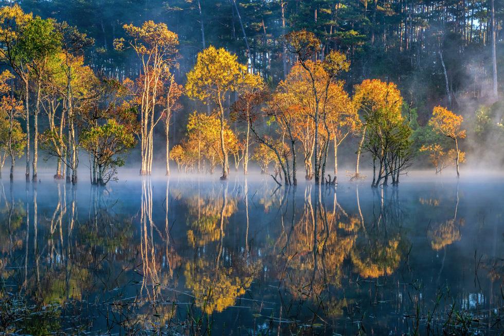 Sương mai bảng lãng trên mặt hồ Tuyền Lâm, đẹp tựa trời Âu - Ảnh 7.