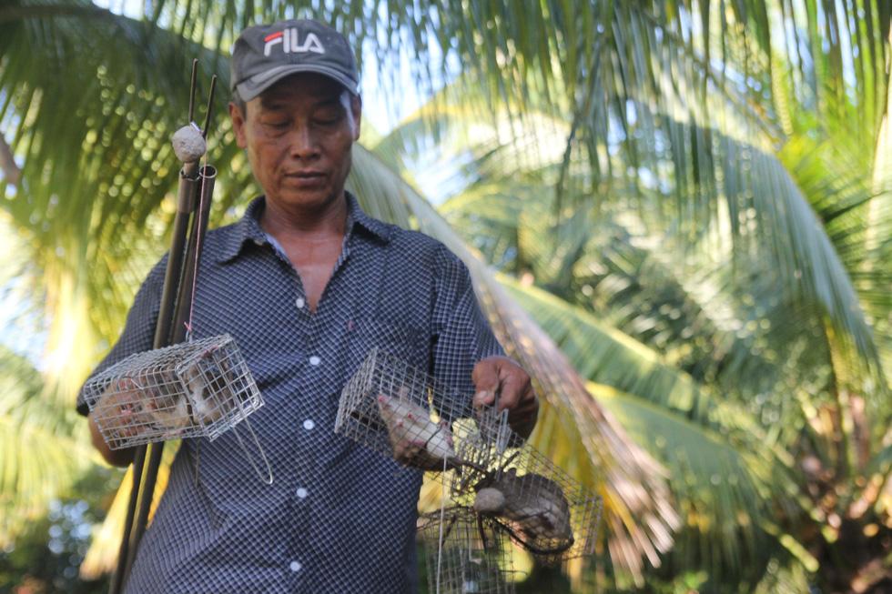 Đặt chuột dừa thu nhập tiền triệu mỗi ngày - Ảnh 1.