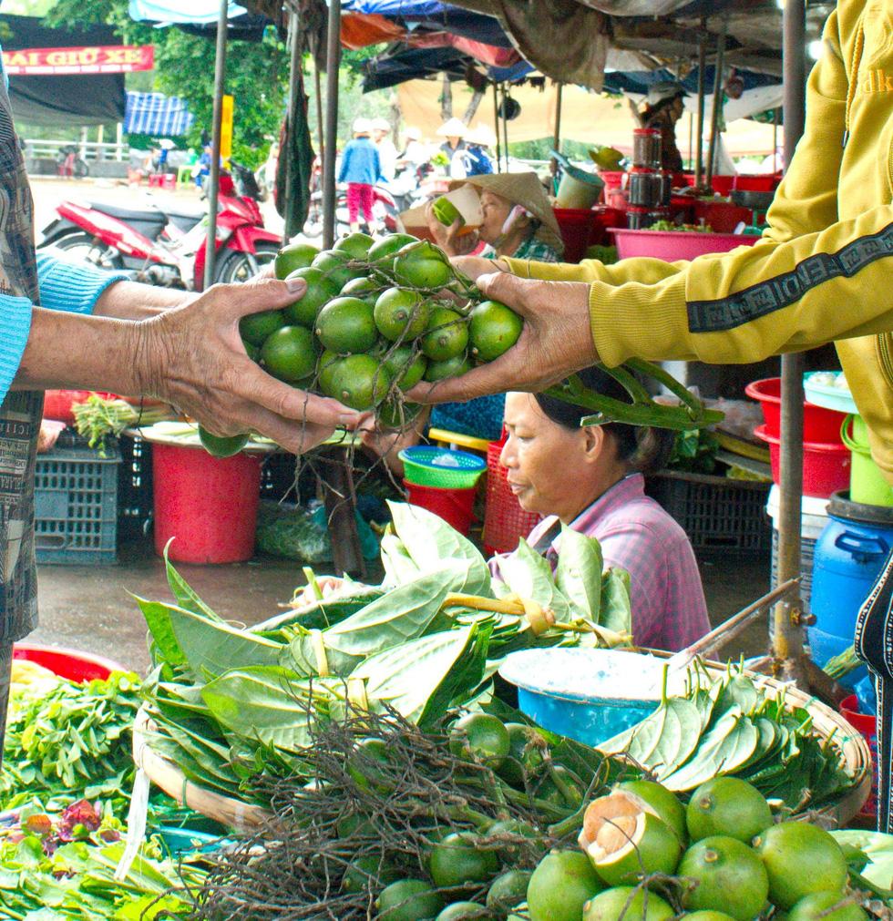 Nhộn nhịp mùa cau ở Tiên Phước, Quảng Nam - Ảnh 5.