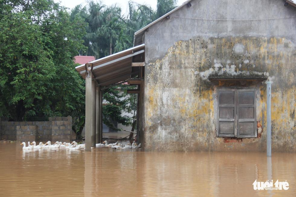 Hàng cứu trợ của Tuổi Trẻ vào nơi không còn thấy đường nào trên mặt nước - Ảnh 9.