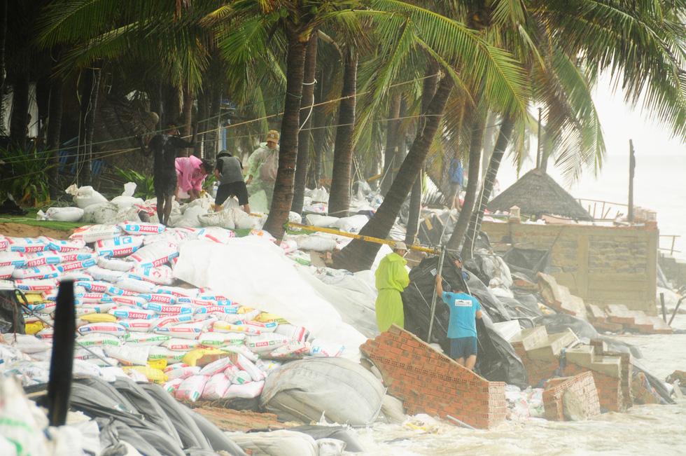 Hàng ngàn dân, quân Hội An đổ ra bờ biển chất bao cát giữ nhà cửa, resort - Ảnh 1.