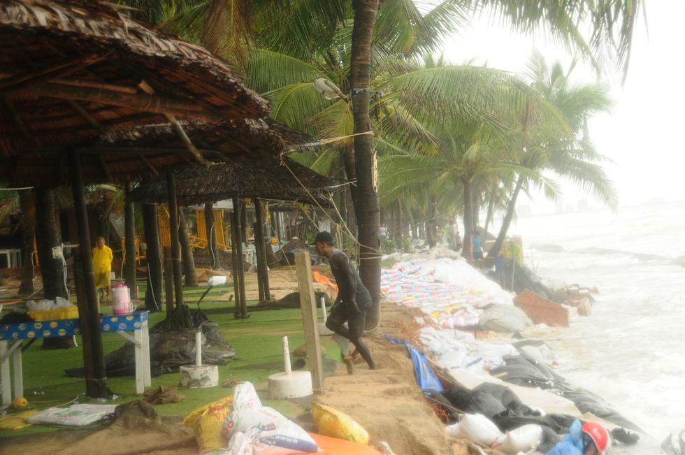 Hàng chục khách Tây vác cát, đắp đê cùng người Hội An giữ bờ biển - Ảnh 7.