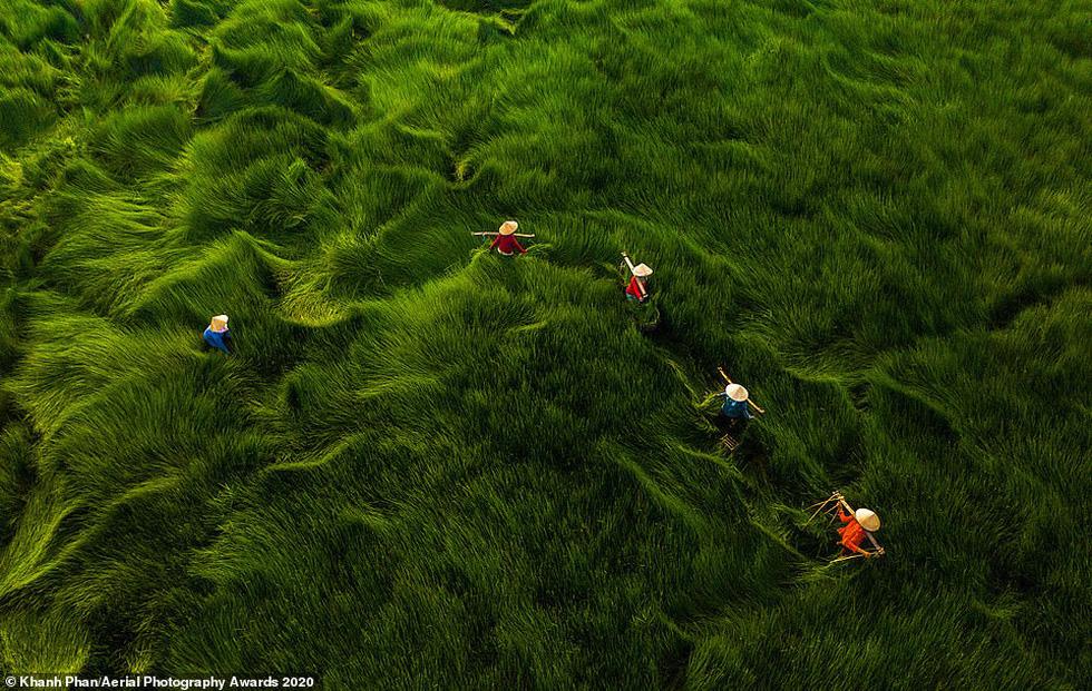 Giải thưởng Nhiếp ảnh trên không 2020: nhiều ảnh được chụp ở Việt Nam - Ảnh 3.