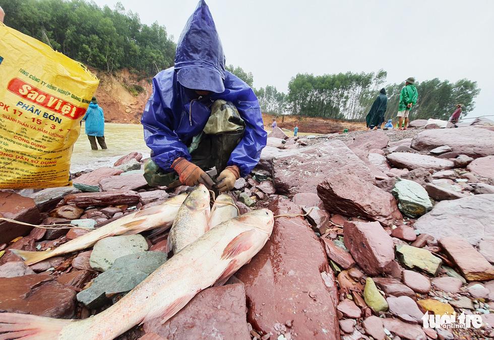Liều mình săn cá 'khủng' dưới chân hồ Kẻ Gỗ - Ảnh 11.