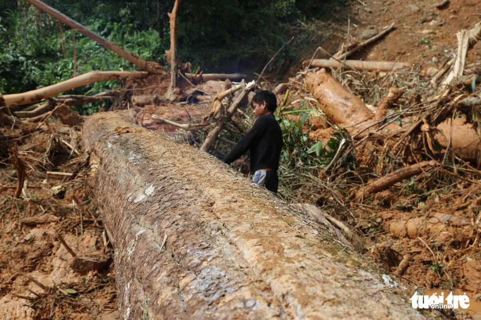 Những hình ảnh đầu tiên ngôi làng bị vùi lấp tại Trà Leng, Nam Trà My - Ảnh 3.