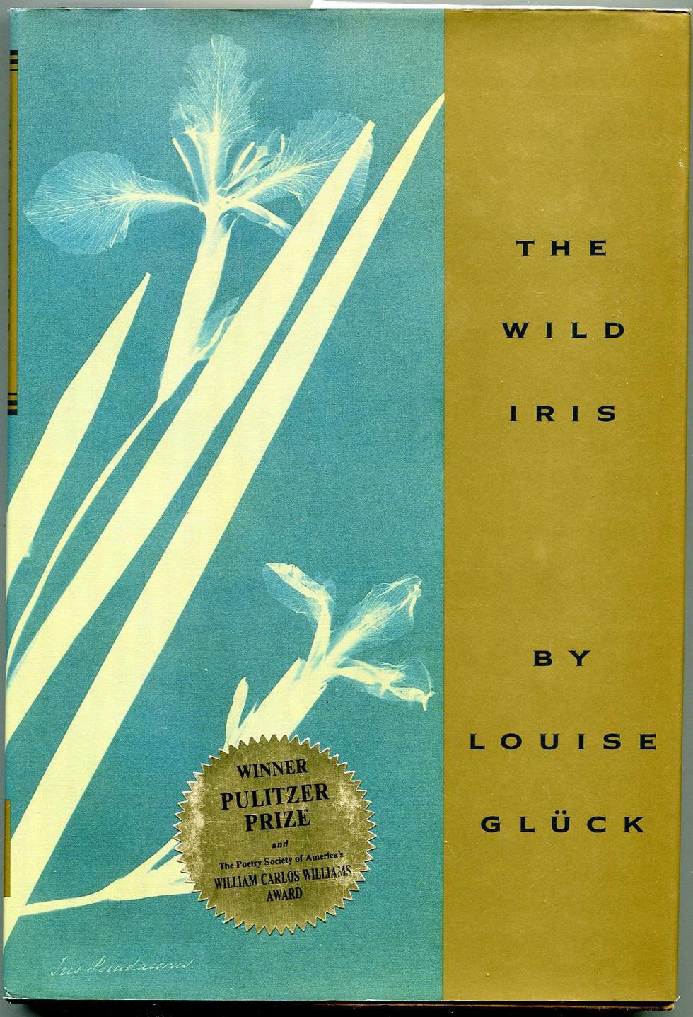 Louise Glück - Nobel văn chương 2020 - Nhà thơ của sự đổi thay và tái sinh cực đoan - Ảnh 4.