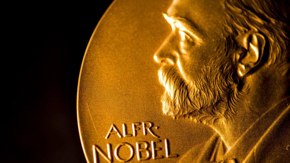 Công bố Nobel văn chương 2020: Nữ thi sĩ người Mỹ Louise Glück thắng giải - Ảnh 2.
