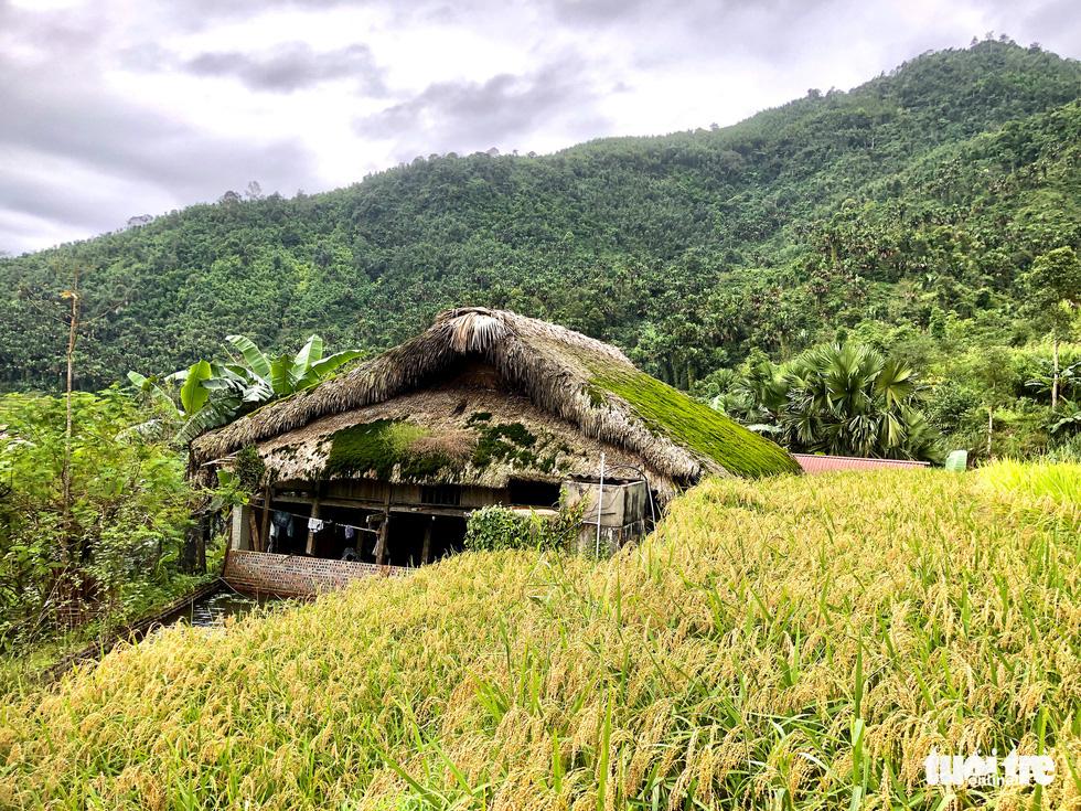 Hà Giang có những mái nhà đặc sắc - Ảnh 1.