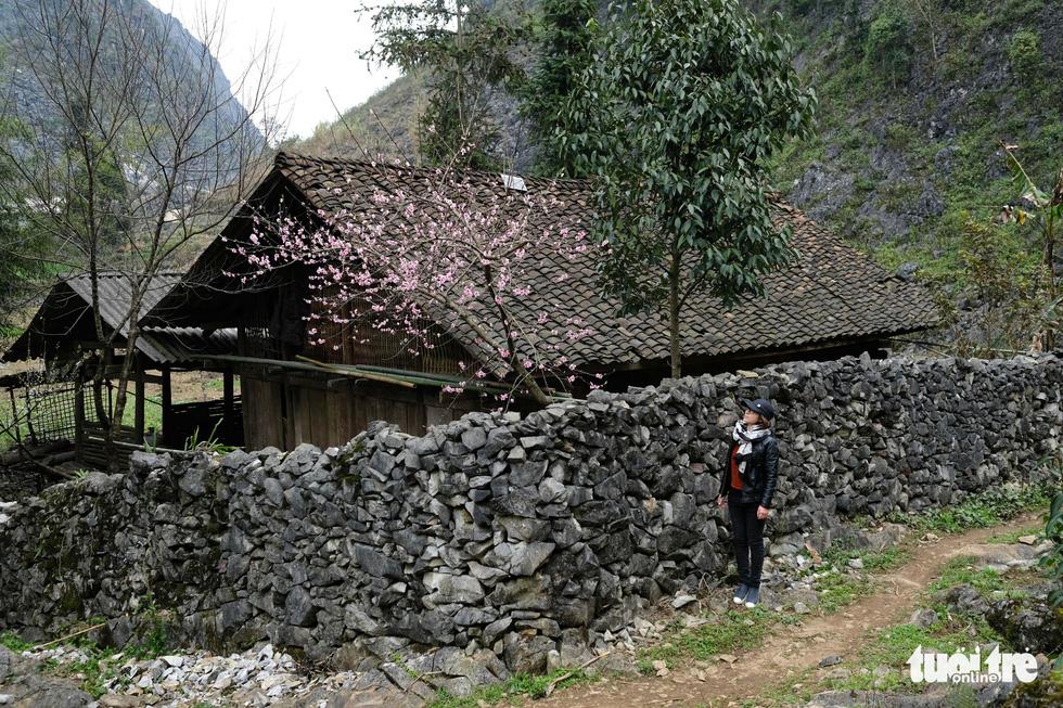 Hà Giang có những mái nhà đặc sắc - Ảnh 7.