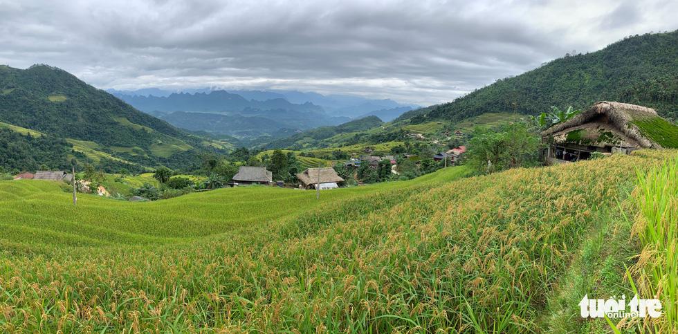 Hà Giang có những mái nhà đặc sắc - Ảnh 4.