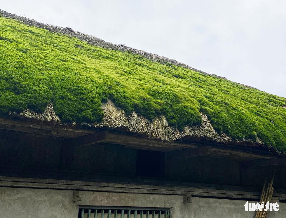 Hà Giang có những mái nhà đặc sắc - Ảnh 8.